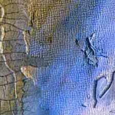 2007-12-29_Ist Jesus von den Toten auferstanden